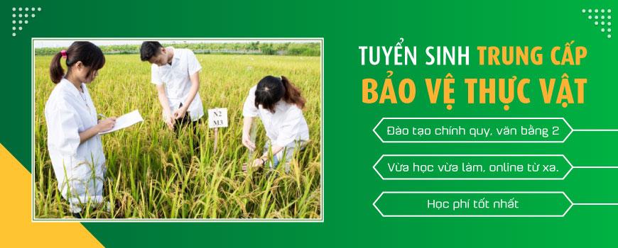 Trung Cap Bao Ve Thuc Vat 2