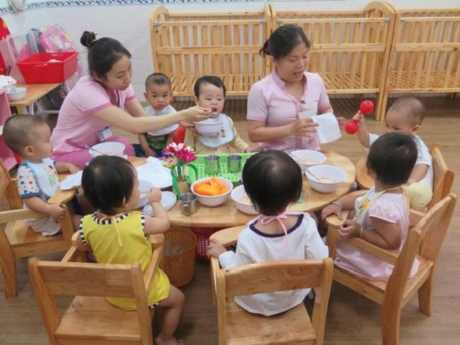 Đại học Sư phạm Đà Nẵng có dạy trung cấp mầm non