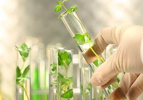 mức lương ngành bảo vệ thực vật