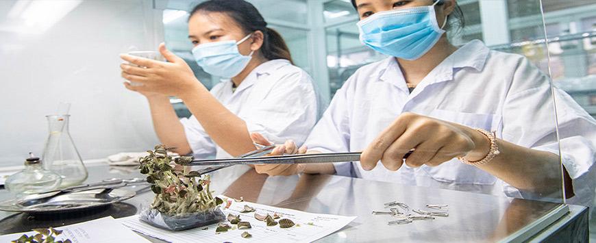 Văn bàng 2 trung cấp bảo vệ thực vật